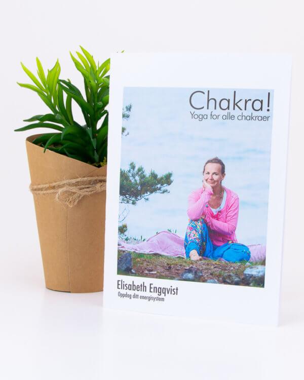 Yoga for alle chakra - av elisabeth engqvist - mediyoga