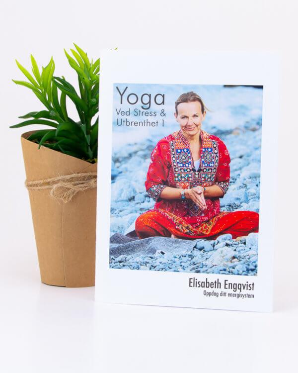Yoga for stress og utmattelse / utbrenthet med Elisabeth Nyqvist - Mediyoga